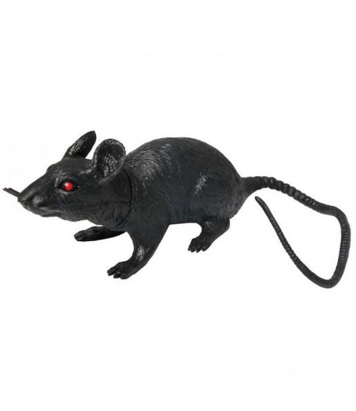 Rat Caoutchouc