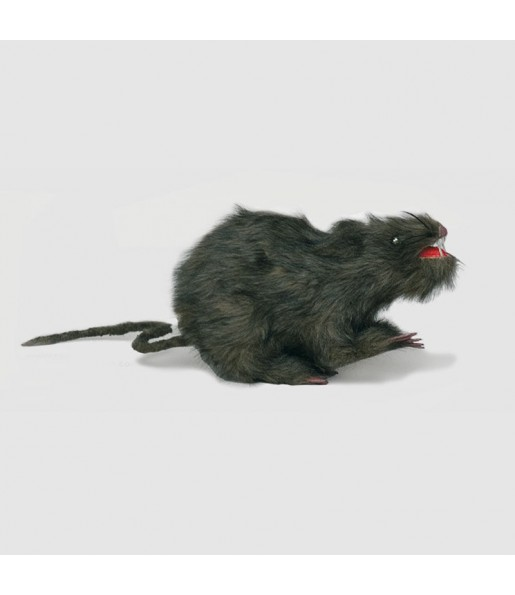 Rat en Plastique