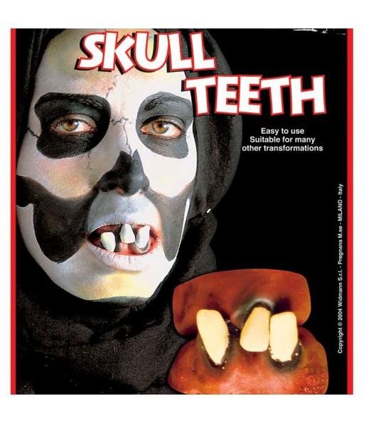 Dentier Skull