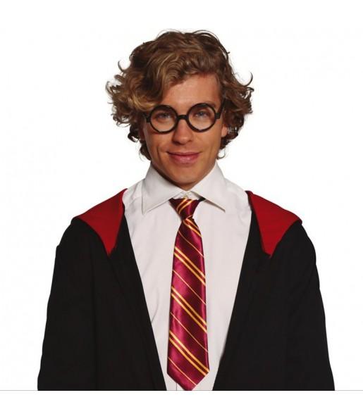 Cravate Magicien Harry Potter