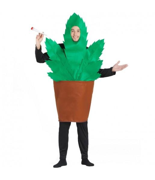 Déguisement Pot de fleur avec marijuana homme