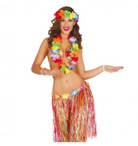 Kit hawaïen Multicolore