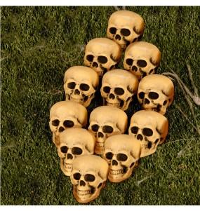 Tête de Mort Décoration Halloween