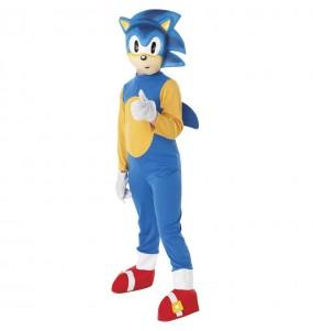 Déguisement Sonic the Hedgehog garçon