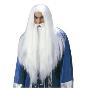Perruque Magicien Merlin Enchanteur