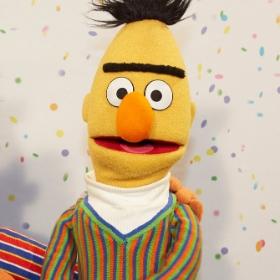 Déguisements Bert pour Carnaval et fêtes